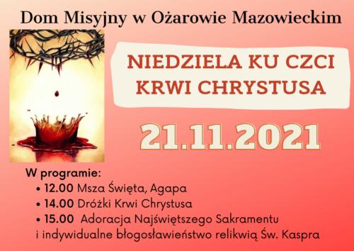 Niedziela ku czci Krwi Chrystusa @ Zamoyskiego 19
